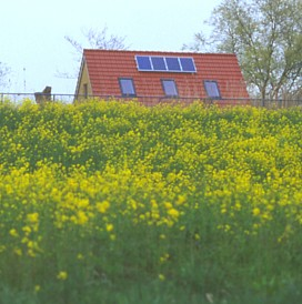 PV in the polder? YES, and with high yields! (PV on farm in Starrevaartpolder, Leidschendam NL)